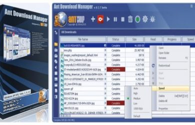 Ant Download Manager Pro 1.7.9 Full Crack